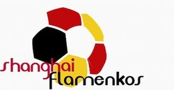 FC FLAMENKOS